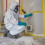 Mold-Remediation-Services-Lockport, IL