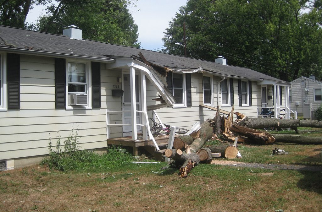How to Clean Up After Fall Storms in Illinois